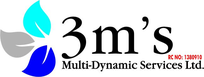 3M's Multi Dynamics Services